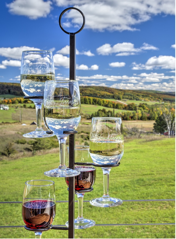 Petoskey FarmsVineyard & Winery - Enjoy wine tasting while sitting on our 60-foot long outdoor covered patio overlooking our 22-acre farm of rolling hills, scenic pastures and 11-acre vineyard. Taste the local grapes and other local fruit in our Michigan wines and hard ciders hand- crafted on site. All just three miles east of downtown Petoskey's shopping and dining.
