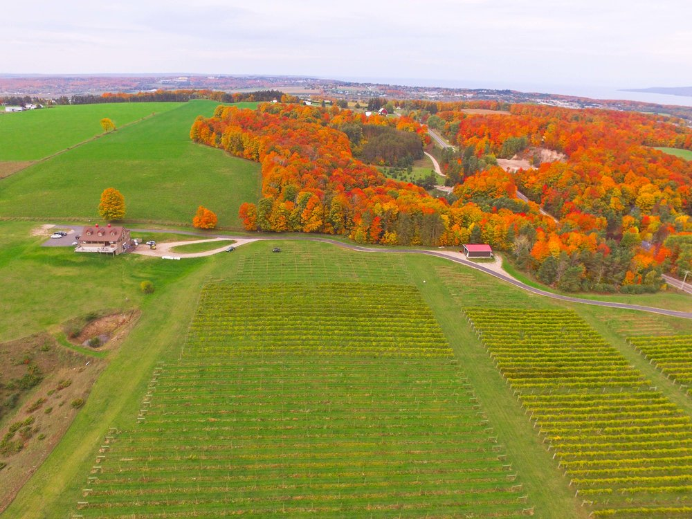 Tip of the Mitt American Viticultural Area - One of Five in Michigan
