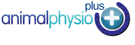 Animal Physio Plus