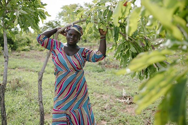 Makada lives by the Daka river in Ghana and depends on trees for survival. Thanks to your searches, we are planting local species of fruit and nut trees here, with our partner @tree_aid. This helps Makada sell mangoes and cashews on the market, and means that she doesn't have to walk four miles everyday. #TreesEmpowerWomen