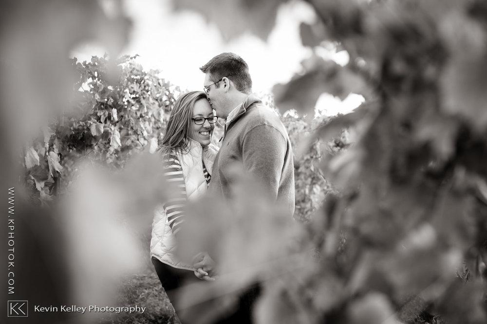 gouveia-wedding-engagement-hubbard-park-2007.jpg