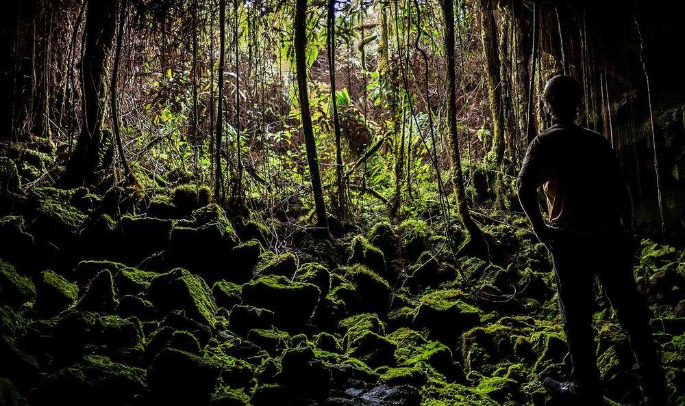 More than 100 entrances in the lush jungle of the Big Island lead to the Kazumura Lava Tube.