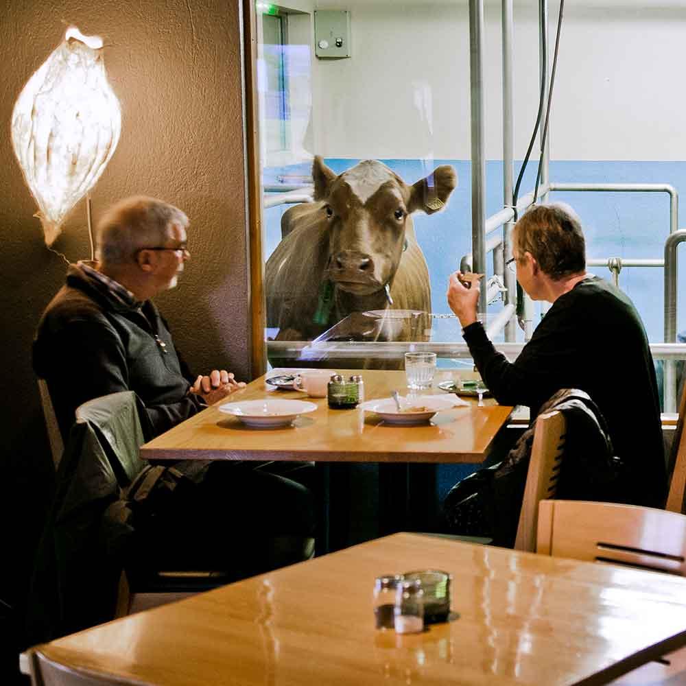 Lake-Myvatn-Food-Cowshed-Restaurant-Vogafjós-02.jpg
