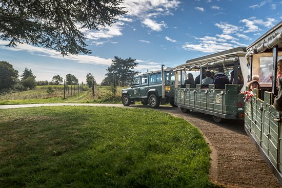 Outdoor - Vineyard Day Tours