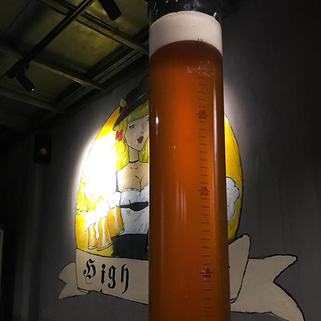 A very voluptuous #IPA #beertower at our favorite #craftbrewery in #Daqing #China. #worldtravel #beer #hops #chinesebeer #drinkingculture