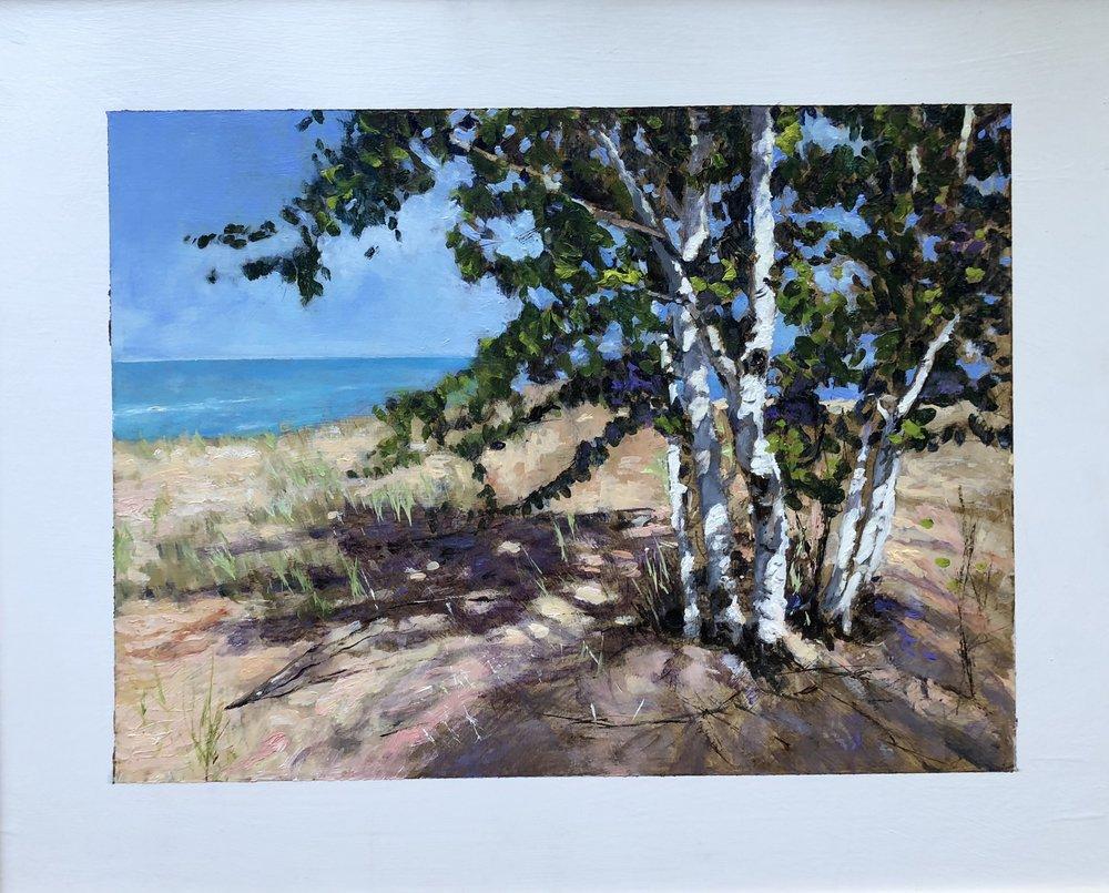 Lake Michigan Birch Grove