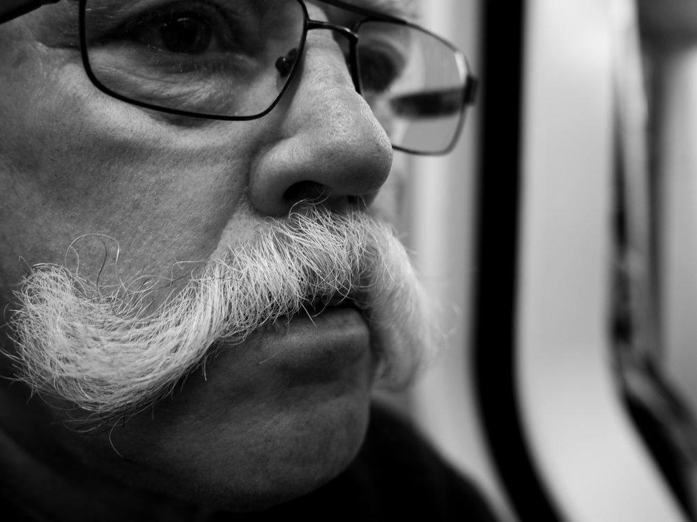A majestic moustache