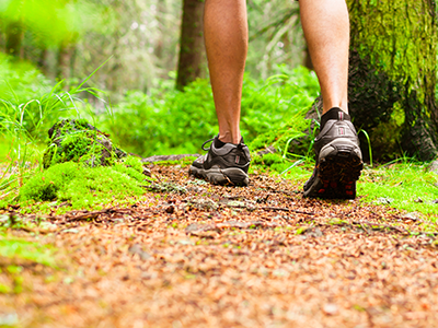 WALKING TRAILS & JOGGING PATHS -