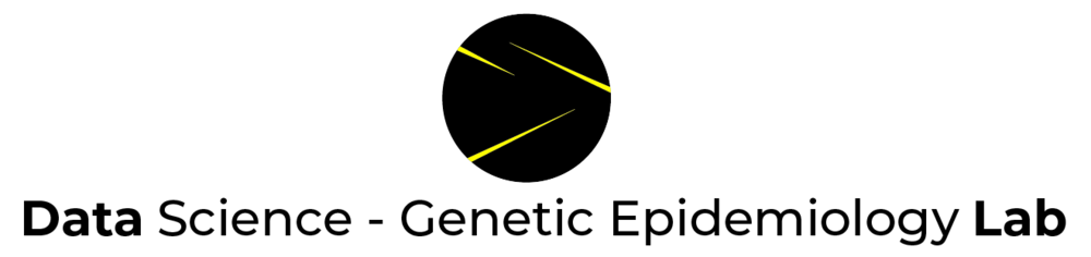 DSGE_logo-01-01.png