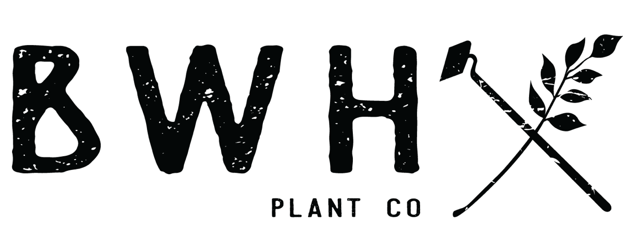 BWH PLANT CO.