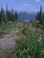 mountain top horizon pic