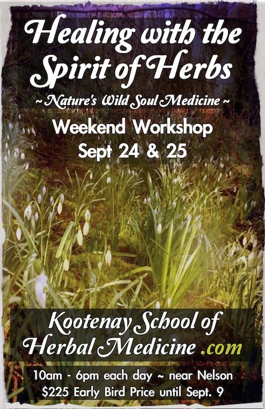 Healing with the Spirit of Herbs weekend workshop - Kootenay School of Herbal Medicine