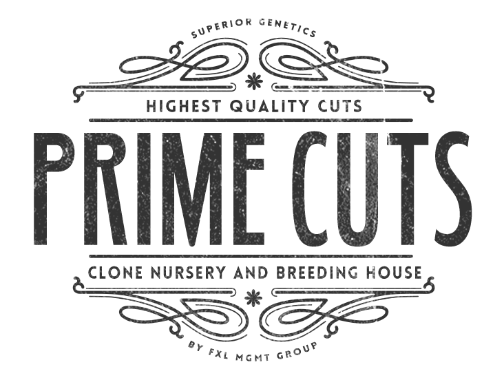 STRAINS AVAILABLE AT PRIME CUTS NURSERY — PRIME CUTS CANNABIS NURSERY