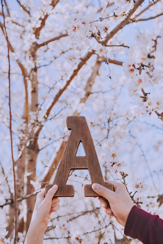 Engagement-photoshoot-chico-sacramento-blooming-orchard1-3.jpg