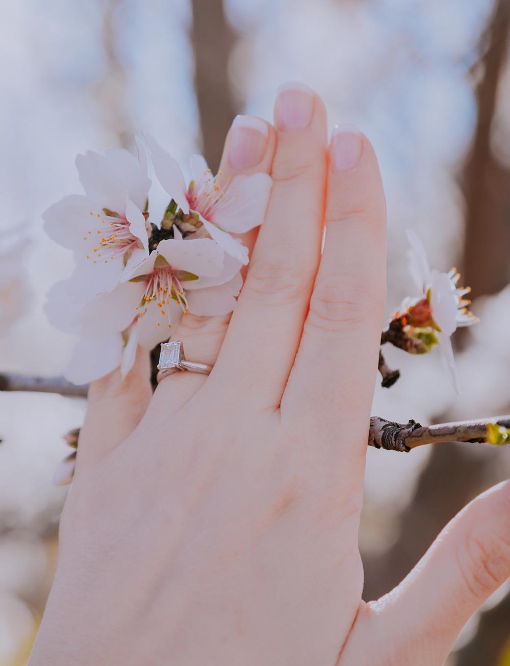 Engagement-photoshoot-chico-sacramento-blooming-orchard9-2.jpg