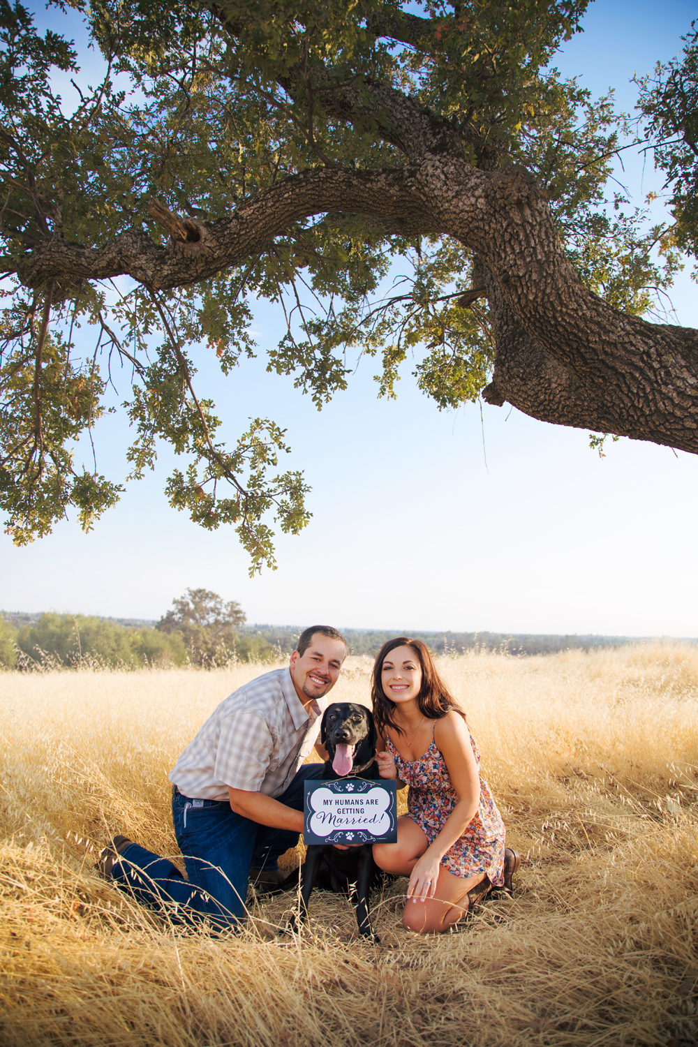 Engagement-with-Dog-photography-Upper-Bidwel-Park-Chico-4-2.jpg
