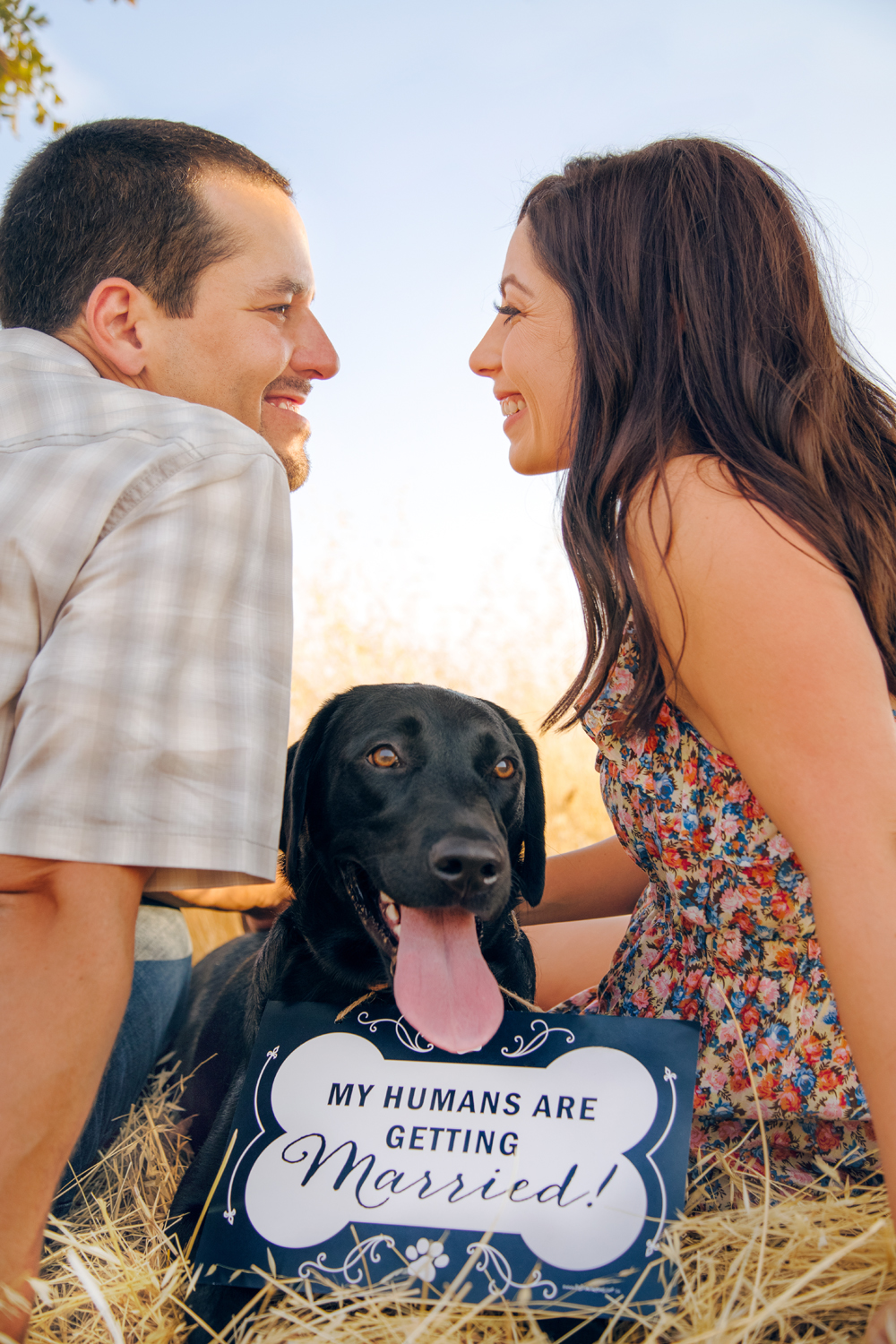 Engagement-with-Dog-photography-Upper-Bidwel-Park-Chico-14.jpg