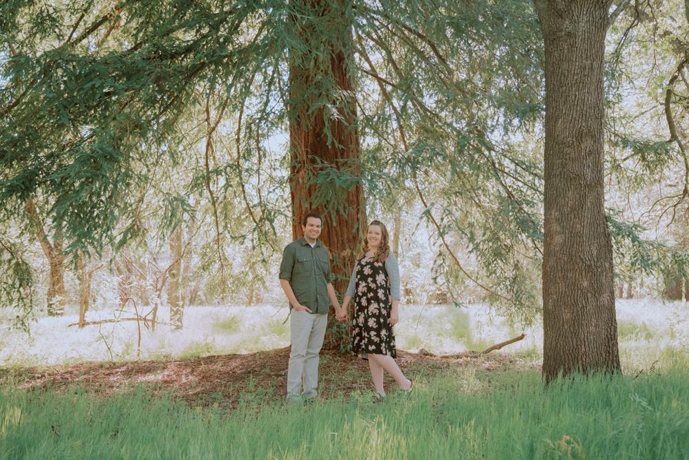Upper-Bidwell-Chico-Engagement-Photographer16.jpg