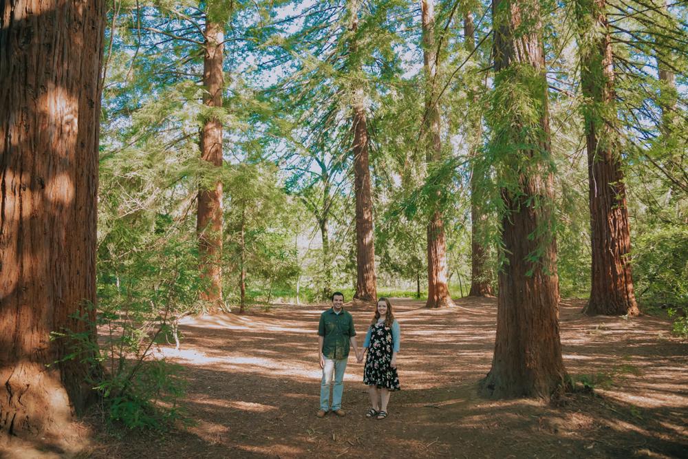Upper-Bidwell-Chico-Engagement-Photographer26.jpg