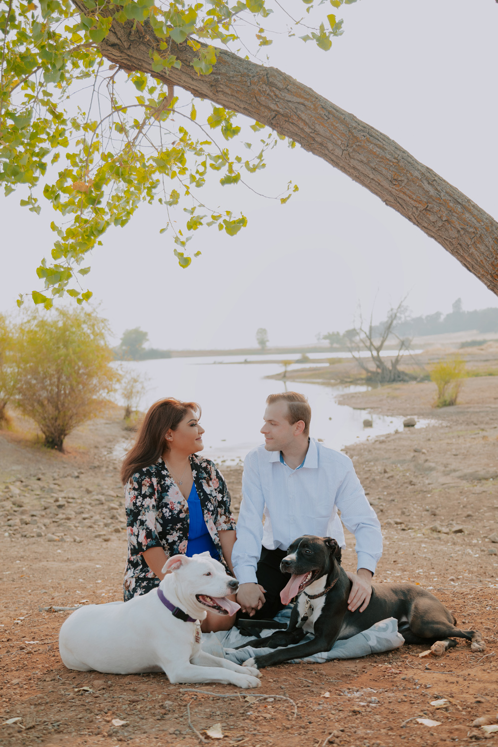 Chico-ca-engagement-photographer-with-dogs-Engagement-11.jpg