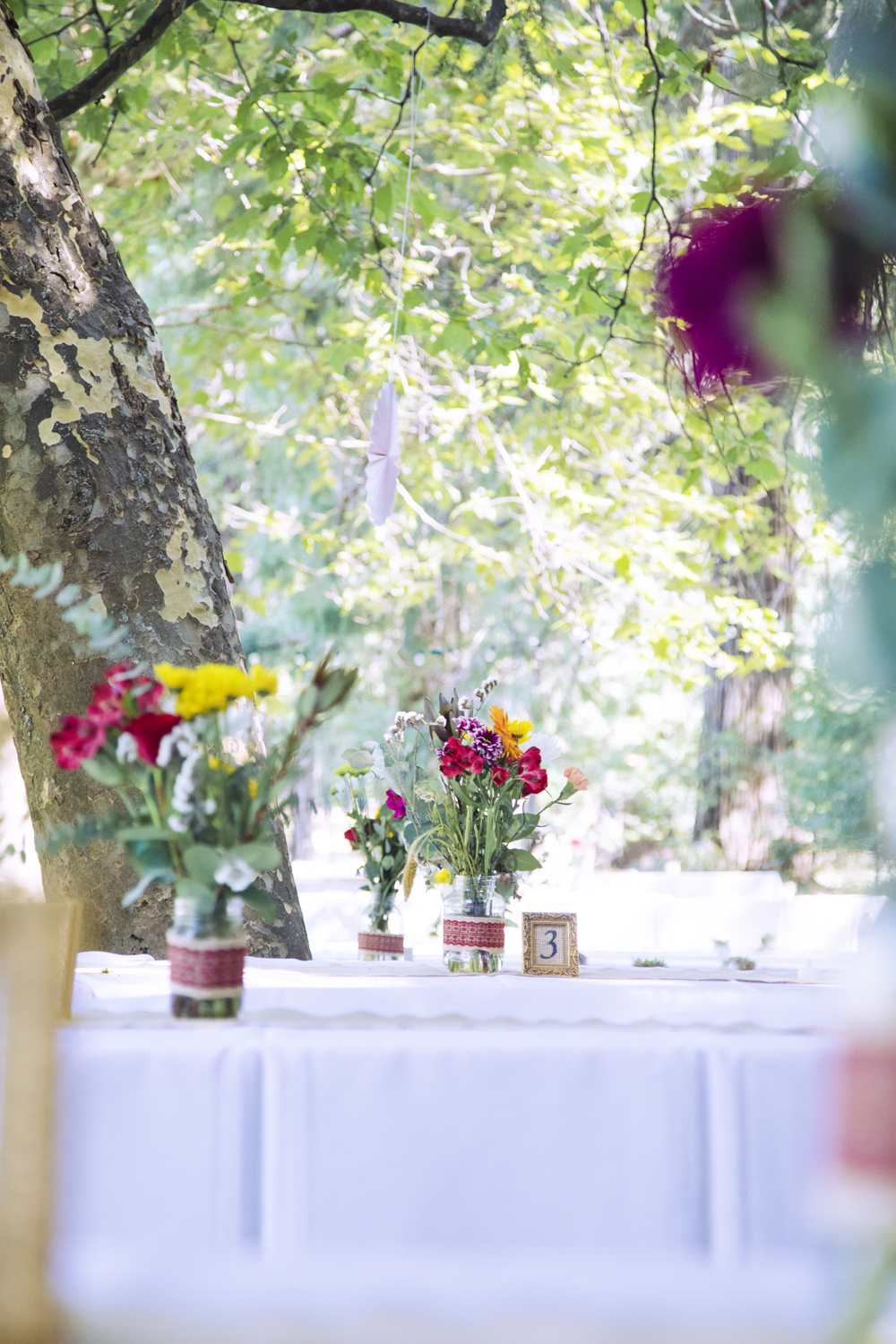 Rustic-Forest-Country-Wedding-Chico-CA11.jpg