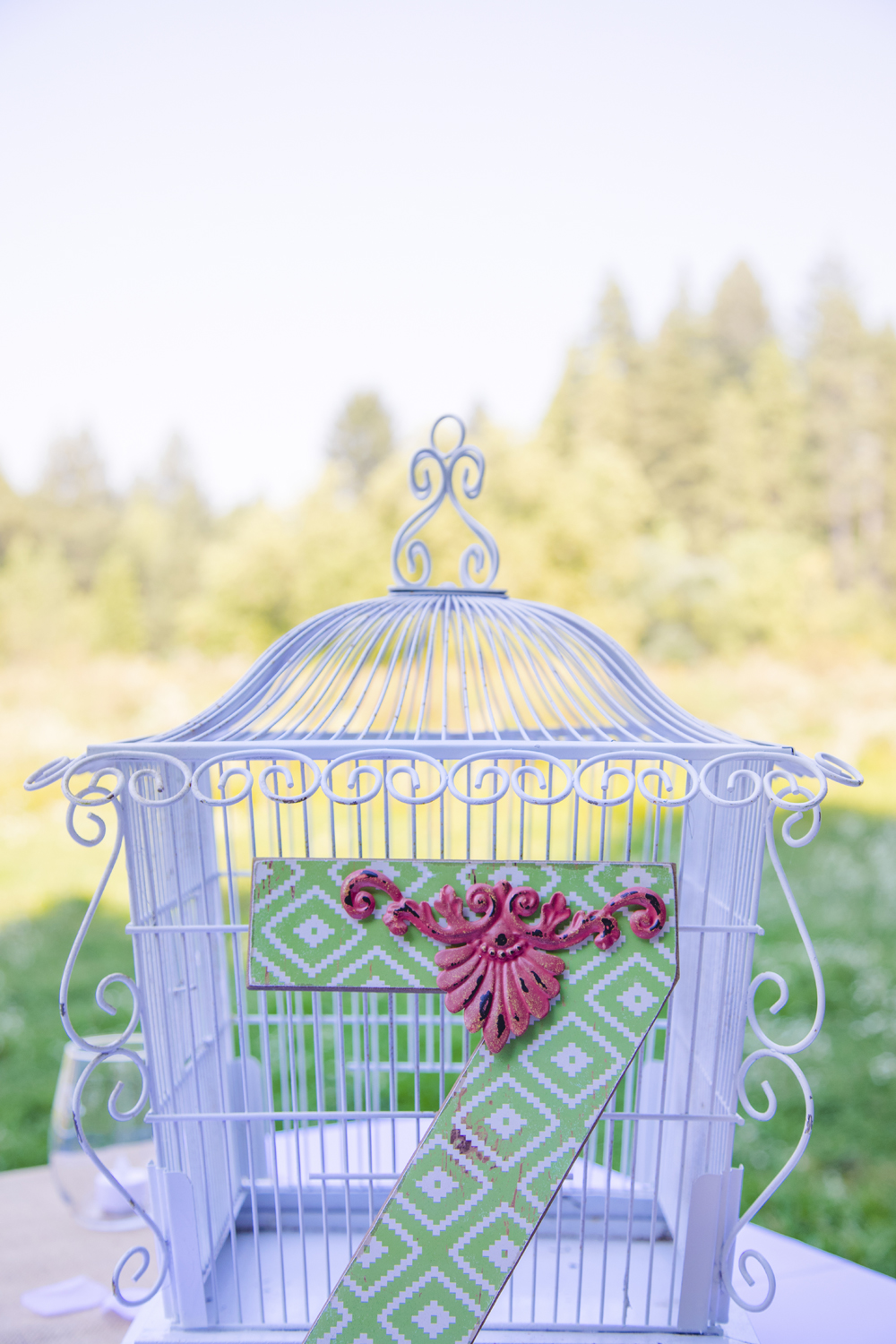 Rustic-Forest-Country-Wedding-Chico-CA14.jpg