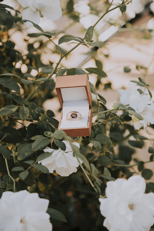 Wedding-photographer-at-Creekside-Rose-Garden-Chico-CA5Wedding-photographer-at-Creekside-Rose-Garden-Chico-CA.jpg
