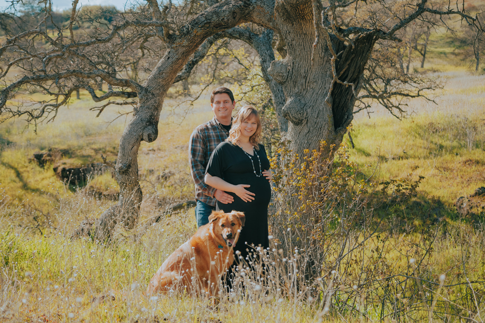 Maternity-session-with-dog-Chico-Upper-Bidwell-Park-07.jpg
