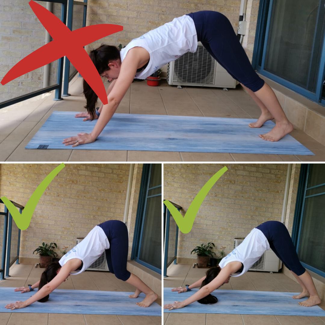 Downward Dog Yoga Pose Description