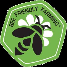 BFF-logo-275.png