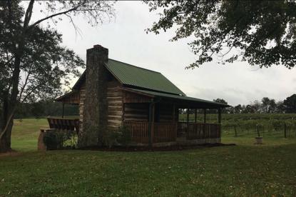 Hidden Vineyard - North Carolina