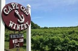 Cape Cod Winery - Massachusetts