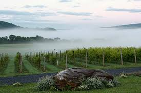 Windham Vineyard & Winery