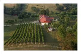 Blue Goose Vineyards