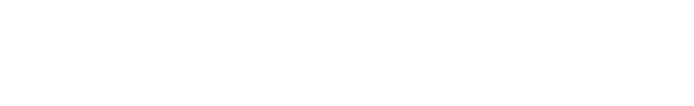 Dumb Punk Logo (2) white.png