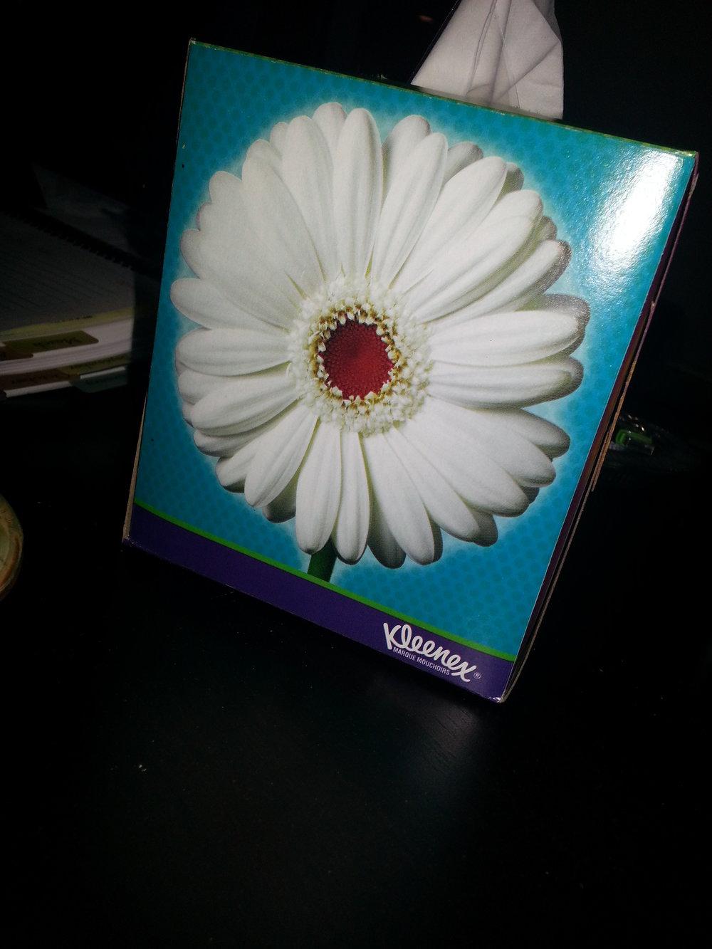 Office-Blue-Flower.jpg