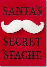 Santas-SecretStache