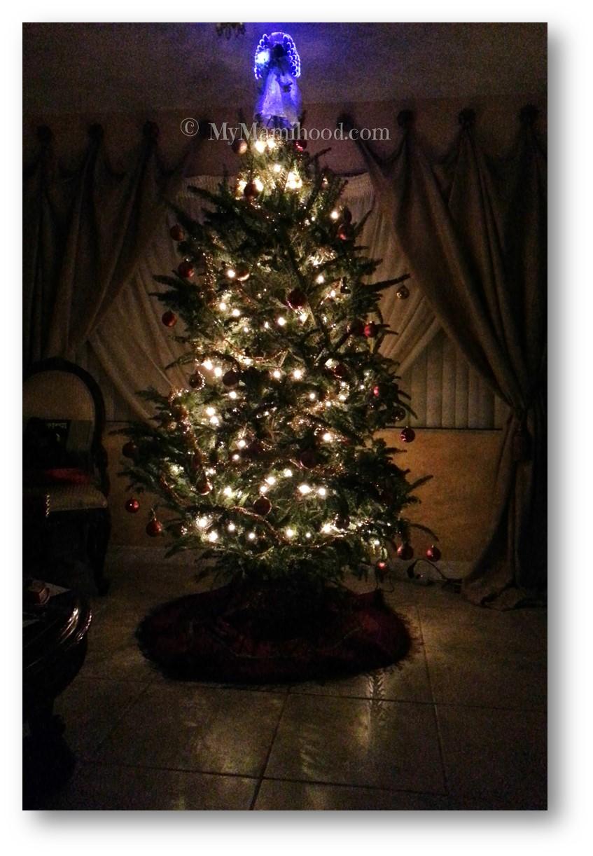 Tree_2013