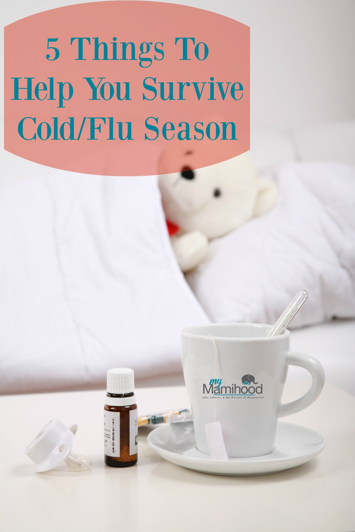 5 Things To Help You Survive Cold/Flu Season