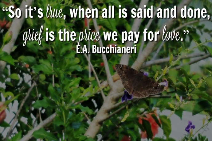 Bucchianeri_Quote_Slider