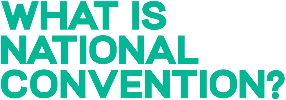NatCon19_Website_Home_WhatIsNC-34.png