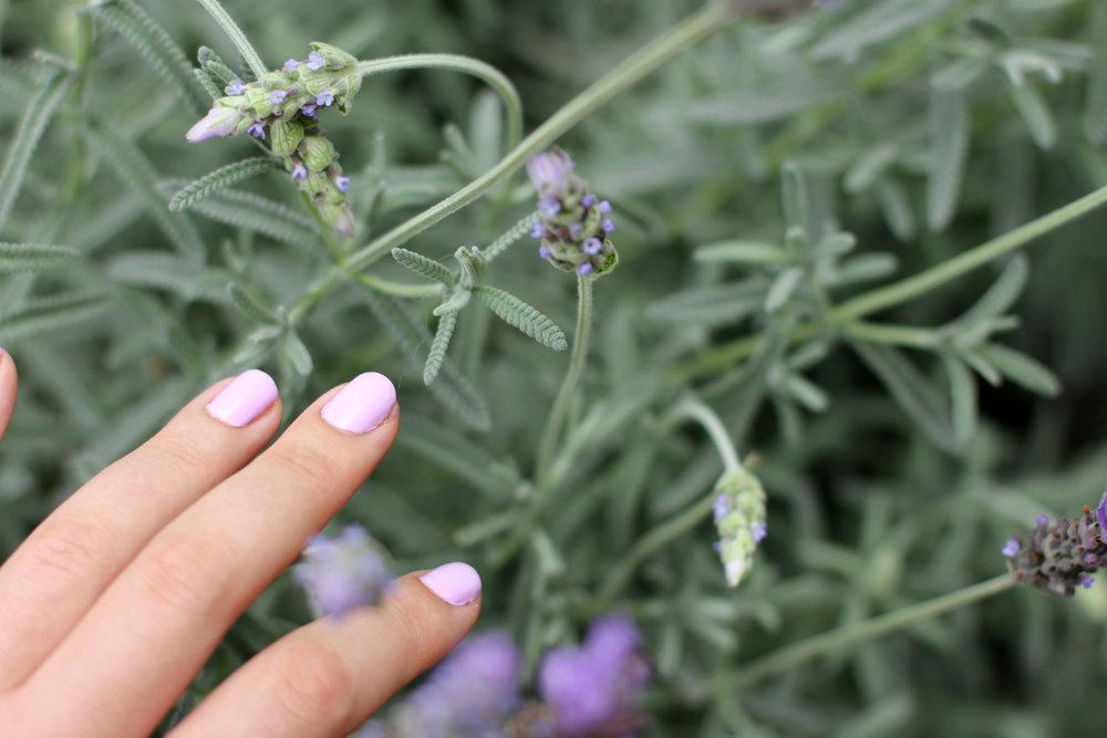 little ondine lilac 02.jpg