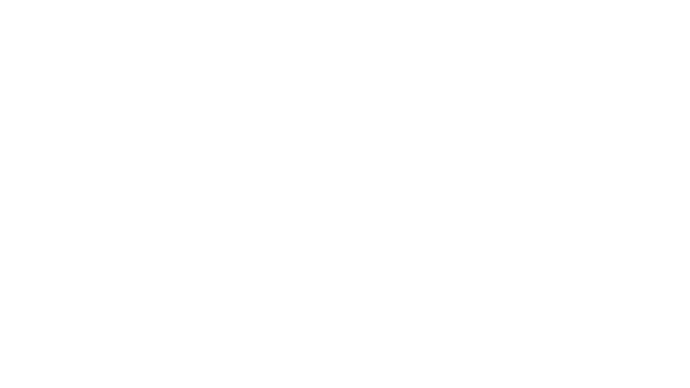 BS-Logow1.png