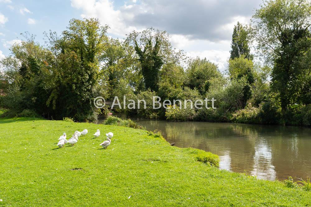 Aug 2018: Cambridge Web Images