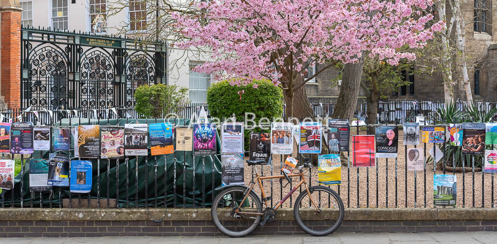 Cambridge-stock-images-220.jpg