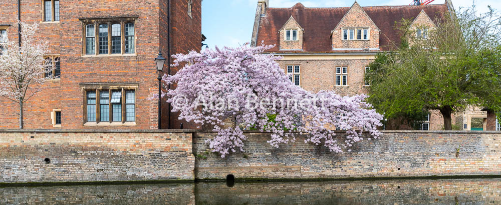 Cambridge-stock-images-222.jpg