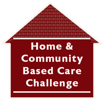 Home Based and Community Health Challenge
