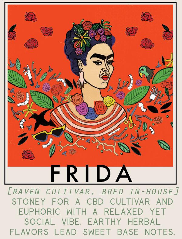 frida-01.png