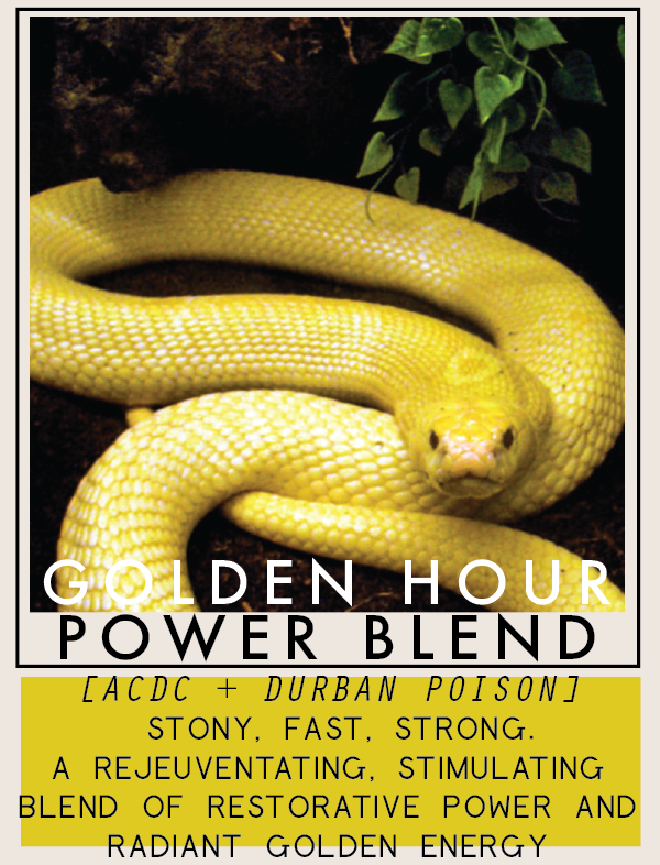 goldenhourpowerblend-01.png