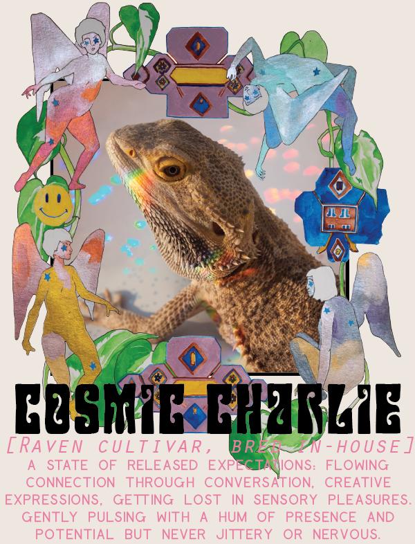 cosmiccharlie-01.png